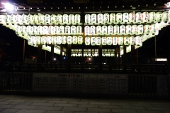 Japanese Lanterns at Yasaka Shrine Kyoto